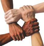 Christian Diversity by Terence Nichols